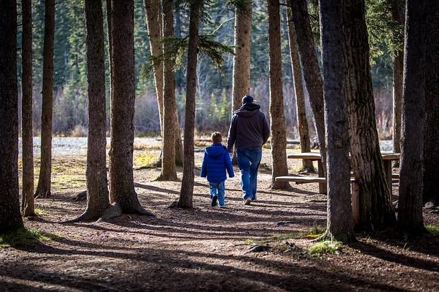 na procházce lesem