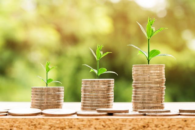 rostlinky na penězích